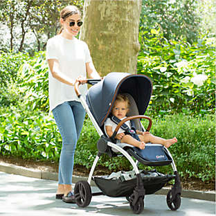 Strollers and baby gear