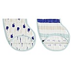 Aden + Anais® High Seas 2-Pack Burpy Bibs in Green/Blue