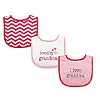 Baby Vision Luvable Friends Girl Grandma Drooler Bib 5-Pack