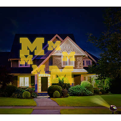 University of Michigan Pride Light