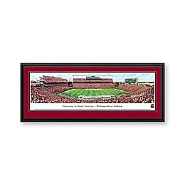University of South Carolina Panorama Stadium Print with Deluxe Frame