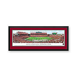 University of South Carolina Panorama Stadium Print with Deluxe Frame
