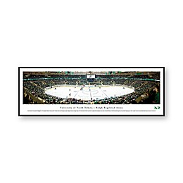NCAA Framed Arena Photo of University of North Dakota - Ralph Engelstad Arena