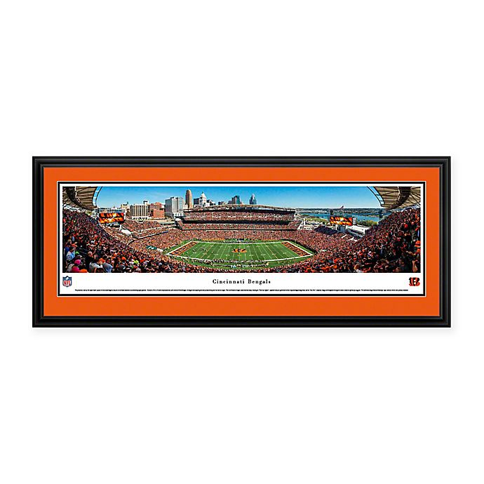 Alternate image 1 for NFL Cincinnati Bengals 50-Yard Line Deluxe Framed Panoramic Picture