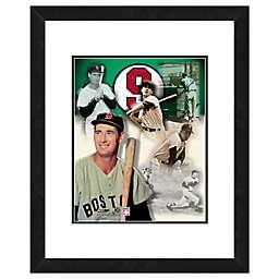 MLB Framed 11-Inch x 14-Inch Baseball Legends Ted Williams Photo