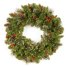 National Tree Company 24-Inch Crestwood Spruce Wreath with 250 Battery-Operated Infinity™ Lights
