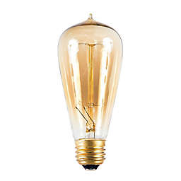 60-Watt Incandescent ST58 Vintage Amber Light Medium Base Bulb