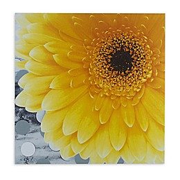 Mi Zone® Vibrant Canvas Wall Art in Yellow