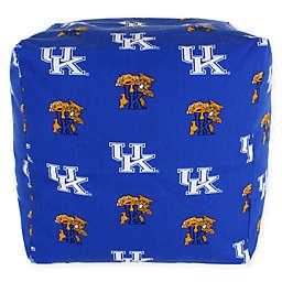 University of Kentucky Cube Cushion