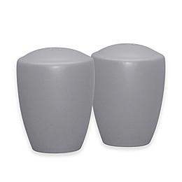Noritake® Colorwave Salt and Pepper Shakers in Slate