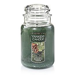 Yankee Candle® Housewarmer® Balsam and Cedar™ Candles