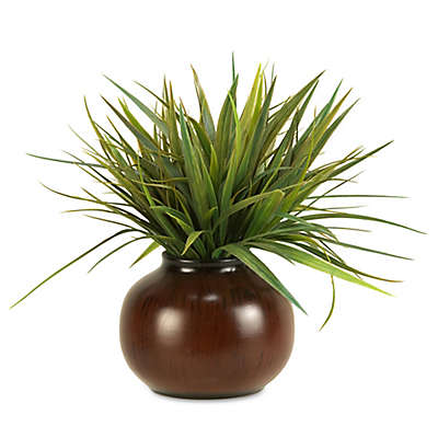 D&W Silks Grass in Round Ceramic Planter