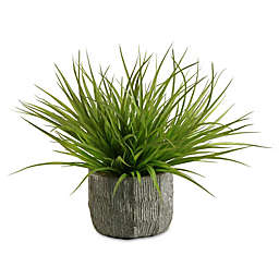 D&W Silks Wild Grass in Concrete Finish Planter