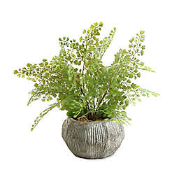 D&W Silks Maidenhair Fern in Concrete Finish Bowl