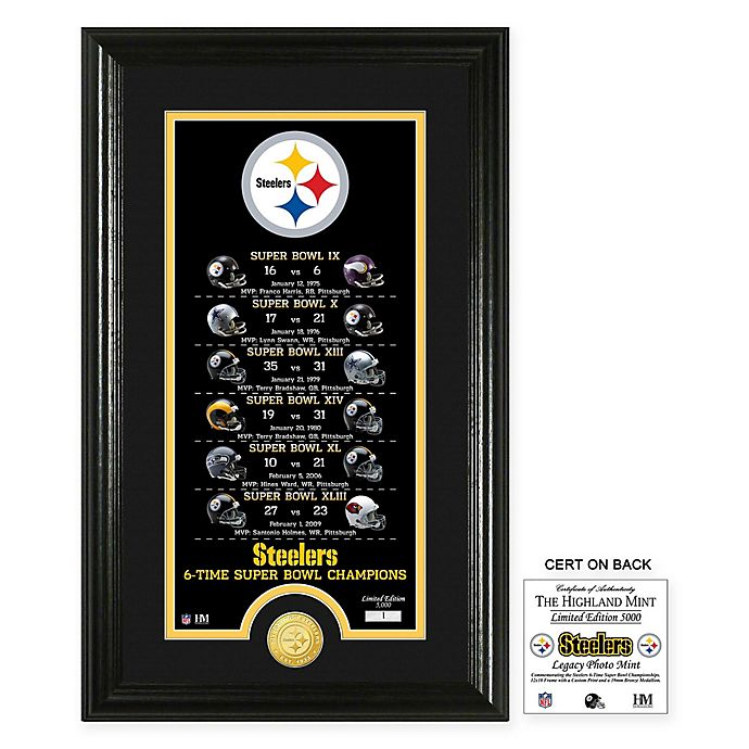 Alternate image 1 for NFL Pittsburgh Steelers Limited Edition Super Bowl Legacy Framed Wall Art with Bronze Team Coin