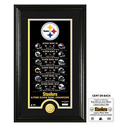 NFL Pittsburgh Steelers Limited Edition Super Bowl Legacy Framed Wall Art with Bronze Team Coin