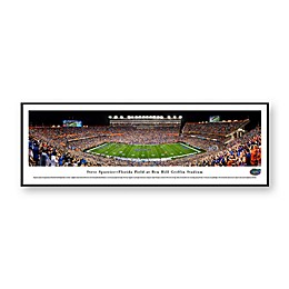 University of Florida Ben Hill Griffin Stadium Panoramic Print with Standard Frame