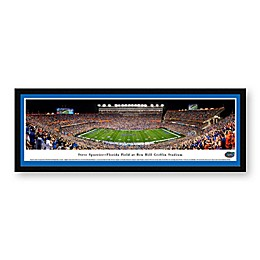 University of Florida Ben Hill Griffin Stadium Panoramic Print with Select Frame