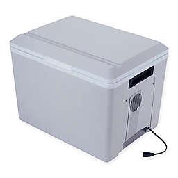 Koolatron P75 Kool Kaddy Cooler