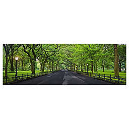Elementem Photography 20-Inch x 60-Inch Photographic Wall Art of Central Park City Escape