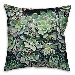 Lush Succulents Square Throw Pillow in Green