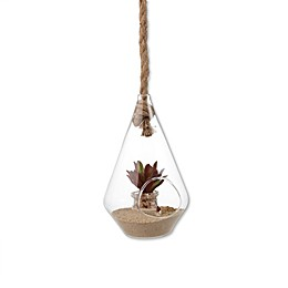 Danya B.™ Diamond Shape Hanging Glass Planter with Rope
