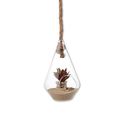 Danya B.™ Diamond Shape Hanging Glass Planter with Rope