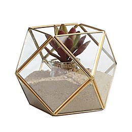 Danya B.™ Polyhedral Brass and Glass Terrarium