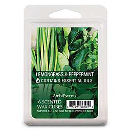 Lemongrass & Peppermint Fragrance Wax Cubes