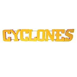 "Iowa State University ""Cyclones"" Recycled Metal Wall Décor"