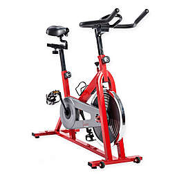 Sunny Health & Fitness® 1110 Indoor Cycling Bike