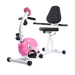 Sunny Health & Fitness® Magnetic Recumbent Bike in Pink