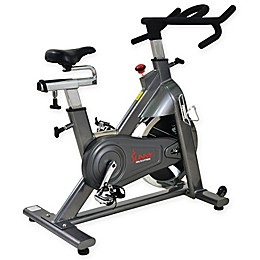 Sunny Health & Fitness® Commercial Indoor Cycling Bike in Grey