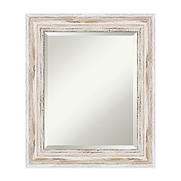 21-Inch x 25-Inch Alexandria Mirror in Whitewash
