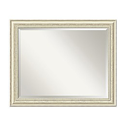 Amanti Art Country 20-Inch x 24-Inch Framed Wall Mirror in Beige
