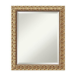 20-Inch x 24-Inch Florentine Mirror in Gold
