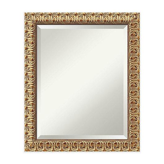 Alternate image 1 for 20-Inch x 24-Inch Florentine Mirror in Gold
