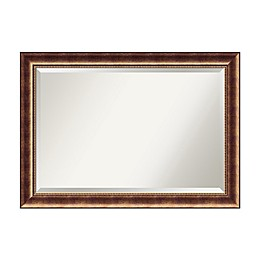 Amanti Art Manhattan 21-Inch x 25-Inch Framed Wall Mirror in Bronze