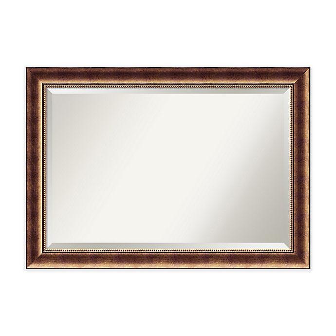 Alternate image 1 for Manhattan Mirror in Bronze
