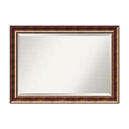 Amanti Art Manhattan 21-Inch x 25-Inch Framed Wall Mirror in Bronze