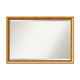 Amanti Art Townhouse 20-Inch x 24-Inch Framed Wall Mirror in Gold