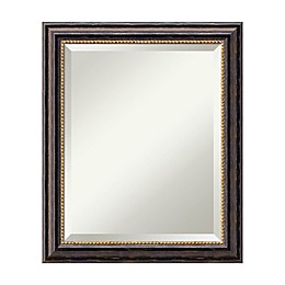 20-Inch x 24-Inch Tuscan Rustic Rectangular Mirror in Brown