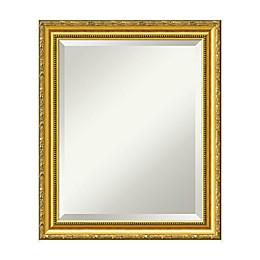 20-Inch x 24-Inch Colonial Mirror in Gold