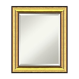 21-Inch x 25-Inch Vegas Rectangular Mirror in Burnished Gold
