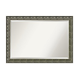 40-Inch x 28-Inch Barcelona Bathroom Mirror in Champagne