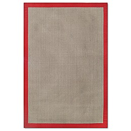 Destination Summer Indoor/Outdoor Border Area Rug in Salsa
