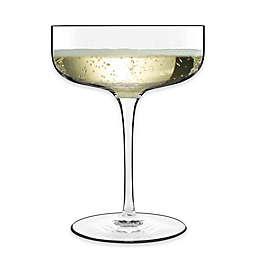 Luigi Bormioli Sublime Coupe Champagne Glasses (Set of 4)