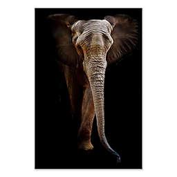 Elephant Wall Art