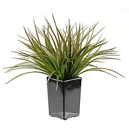 D&W Silks Brown/Green Grass in Square Ceramic Planter