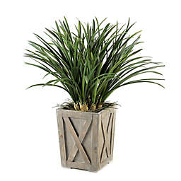 D&W Silks Green Areca Grass in Wood Planter Box